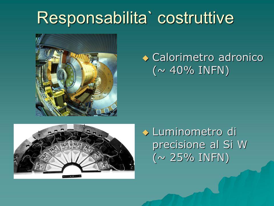 Responsabilita` costruttive Calorimetro adronico (~ 40% INFN) Calorimetro adronico (~ 40% INFN) Luminometro di precisione al Si W (~ 25% INFN) Luminom
