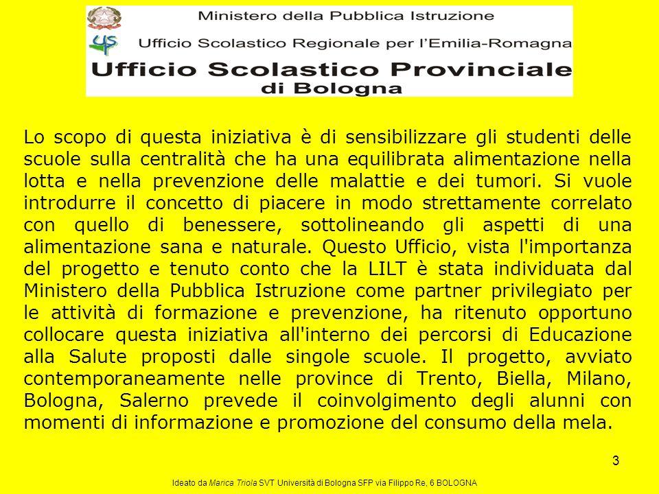 14 Ideato da Marica Triola SVT Università di Bologna SFP via Filippo Re, 6 BOLOGNA