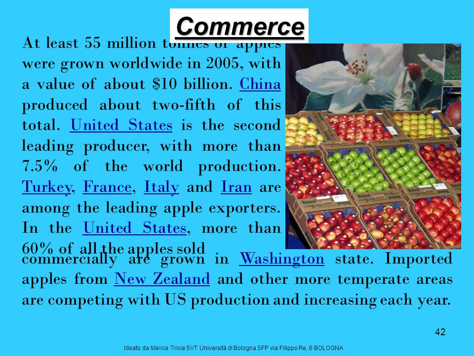 42 At least 55 million tonnes of apples were grown worldwide in 2005, with a value of about $10 billion. China produced about two-fifth of this total.