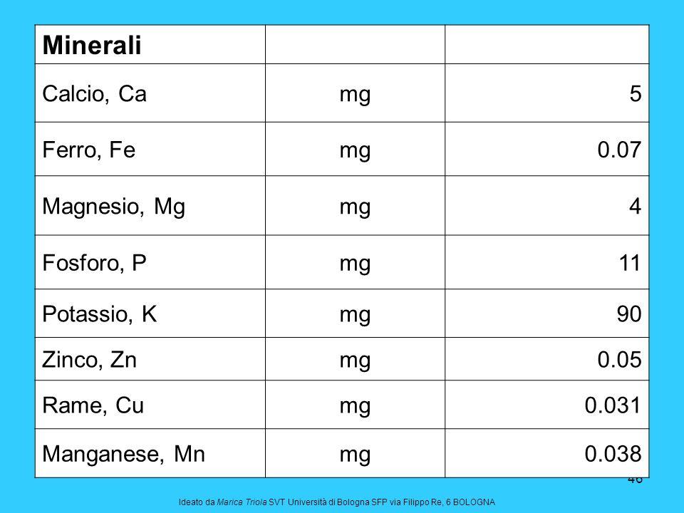 46 Minerali Calcio, Camg5 Ferro, Femg0.07 Magnesio, Mgmg4 Fosforo, Pmg11 Potassio, Kmg90 Zinco, Znmg0.05 Rame, Cumg0.031 Manganese, Mnmg0.038 Ideato d