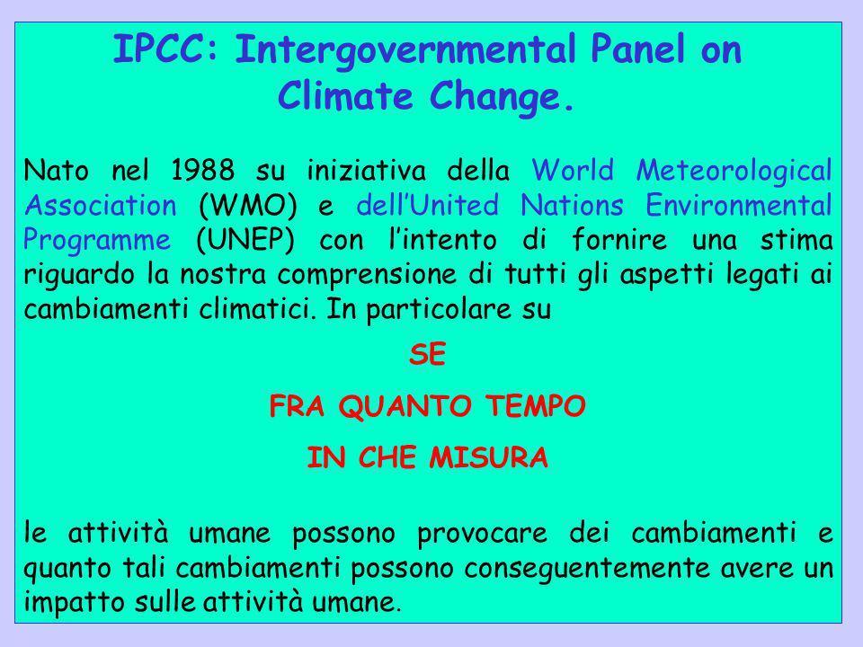 IPCC: Intergovernmental Panel on Climate Change. Nato nel 1988 su iniziativa della World Meteorological Association (WMO) e dellUnited Nations Environ