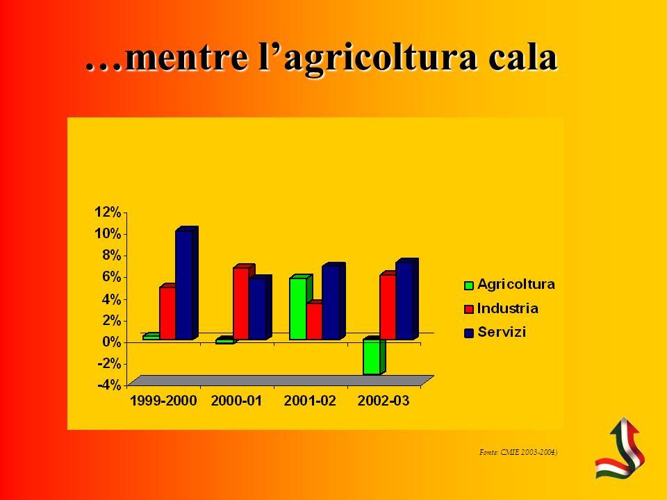 Fonte: CMIE 2003-2004) …mentre lagricoltura cala