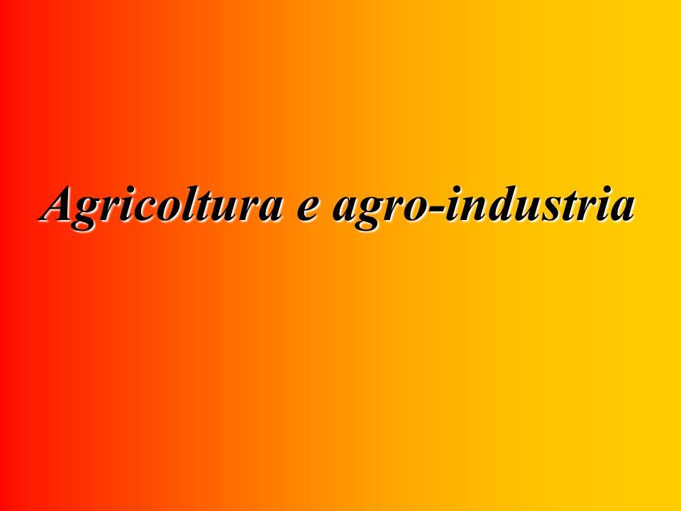 Agricoltura e agro-industria