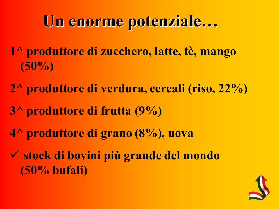 Un enorme potenziale… 1^ produttore di zucchero, latte, tè, mango (50%) 2^ produttore di verdura, cereali (riso, 22%) 3^ produttore di frutta (9%) 4^ produttore di grano (8%), uova stock di bovini più grande del mondo (50% bufali)