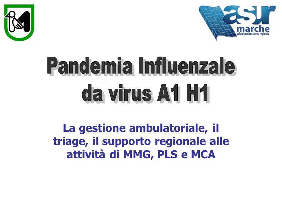 Conclusioni I MMG e i PLS hanno dimestichezza nella gestione dellinfluenza stagionale La quasi totalità dei medici non ha vissuto un evento pandemico Pochissimi conoscono il piano pandemico Non è stata fatta nessuna attività di simulazione Ci faremo le ossa con questa pandemia per affrontare quella prossima ventura… H5N1 .