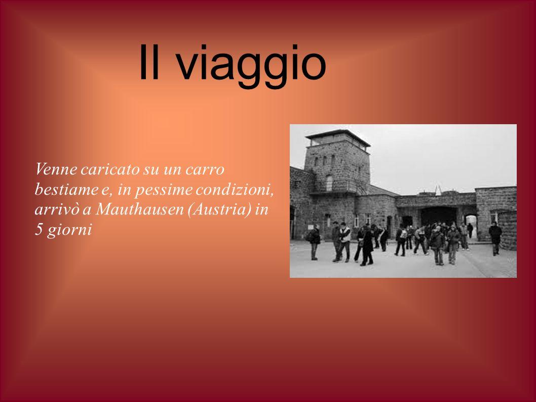 Il viaggio Venne caricato su un carro bestiame e, in pessime condizioni, arrivò a Mauthausen (Austria) in 5 giorni