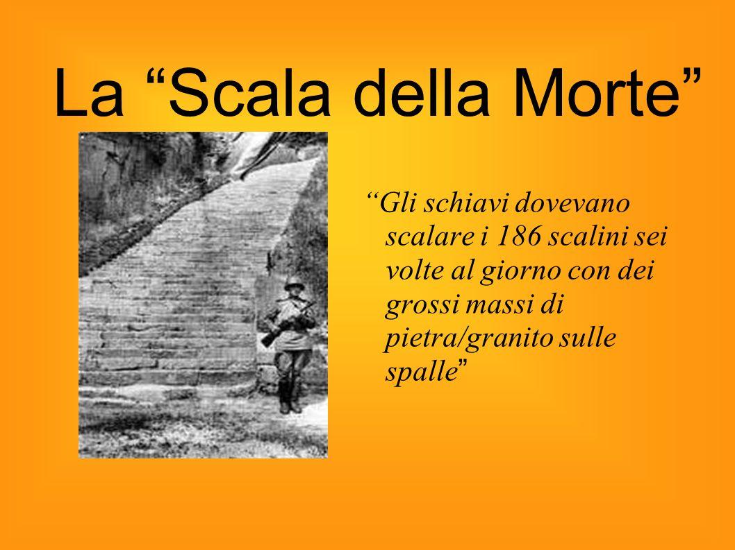 Gli schiavi dovevano scalare i 186 scalini sei volte al giorno con dei grossi massi di pietra/granito sulle spalle La Scala della Morte