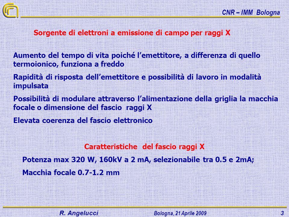 CNR – IMM Bologna R.