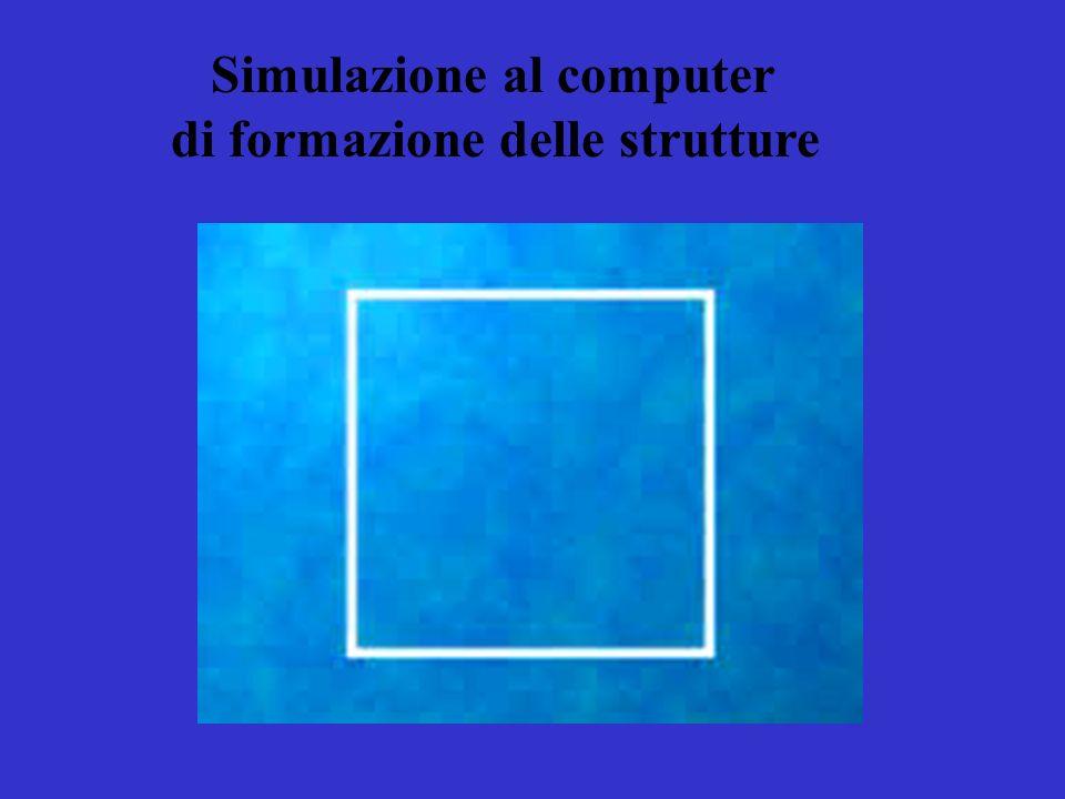 Simulazione al computer di formazione delle strutture