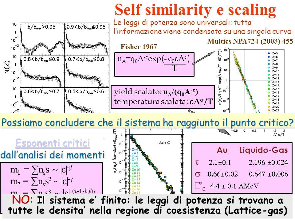 Au Liquido-Gas c eV IsIs PRL2002 n A =q 0 A - exp(- c 0 A ) T Fisher 1967 Multics NPA724 (2003) 455 Le leggi di potenza sono universali: tutta linform