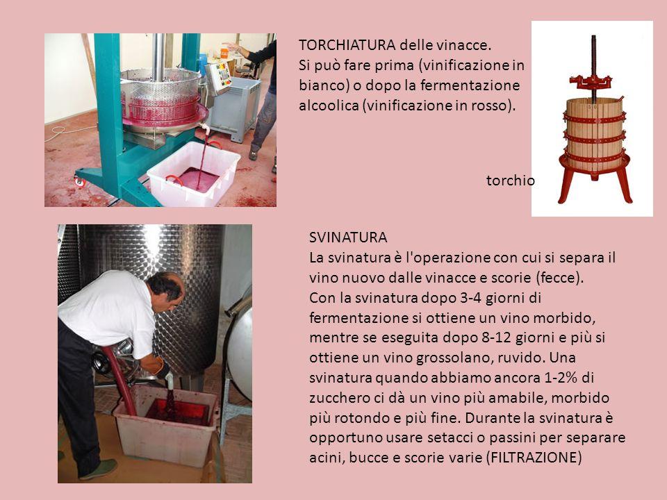 TORCHIATURA delle vinacce. Si può fare prima (vinificazione in bianco) o dopo la fermentazione alcoolica (vinificazione in rosso). torchio SVINATURA L