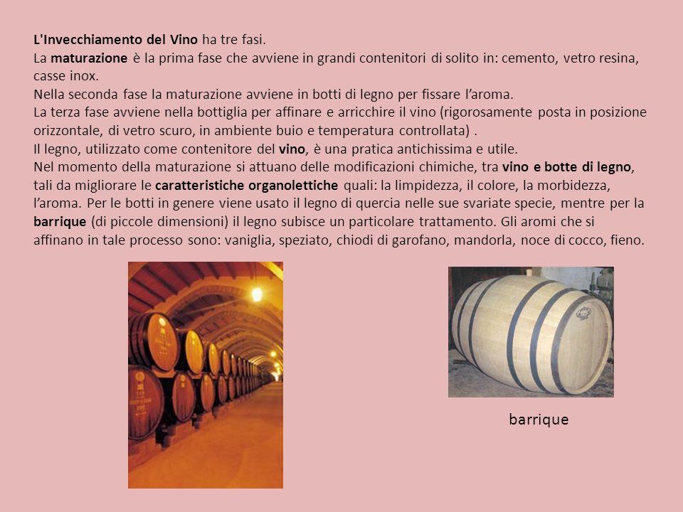 L'Invecchiamento del Vino ha tre fasi. La maturazione è la prima fase che avviene in grandi contenitori di solito in: cemento, vetro resina, casse ino