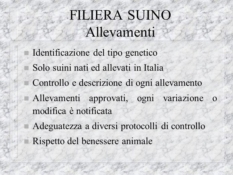 FILIERA SUINO Allevamenti n Identificazione del tipo genetico n Solo suini nati ed allevati in Italia n Controllo e descrizione di ogni allevamento n