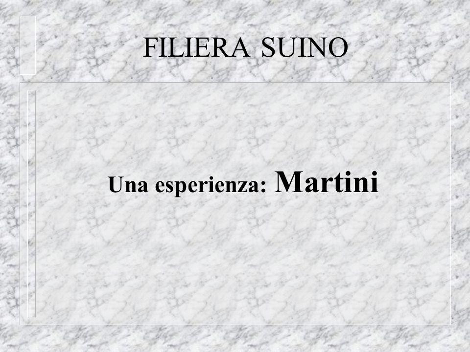 FILIERA SUINO Una esperienza: Martini