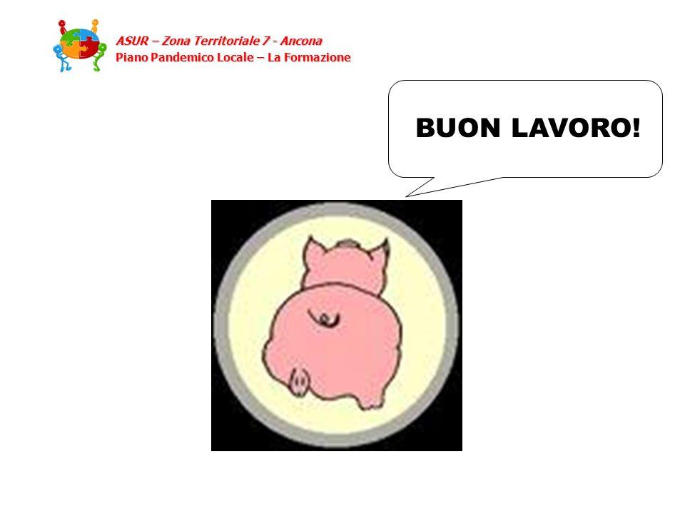 BUON LAVORO! ASUR – Zona Territoriale 7 - Ancona Piano Pandemico Locale – La Formazione