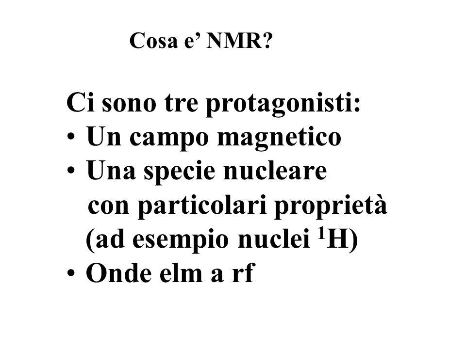 Ci sono tre protagonisti: Un campo magnetico Una specie nucleare con particolari proprietà (ad esempio nuclei 1 H) Onde elm a rf Cosa e NMR?