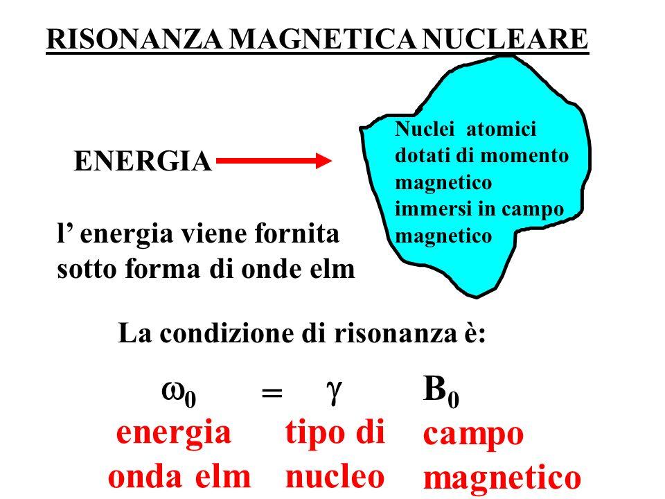 Nuclei atomici dotati di momento magnetico immersi in campo magnetico ENERGIA l energia viene fornita sotto forma di onde elm La condizione di risonan