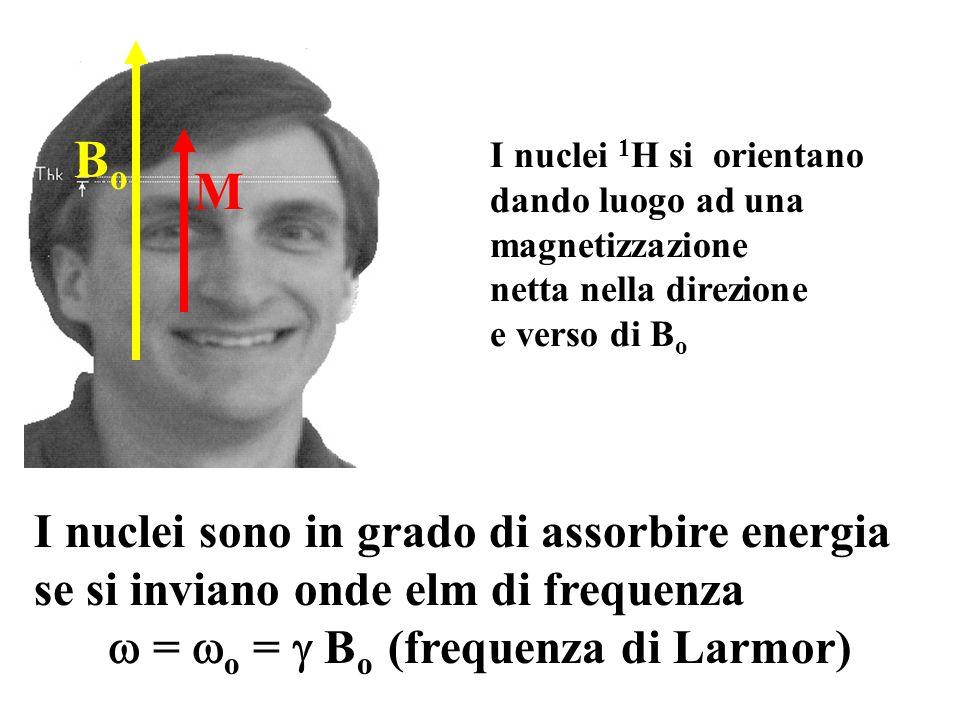 I nuclei sono in grado di assorbire energia se si inviano onde elm di frequenza = o = B o (frequenza di Larmor) I nuclei 1 H si orientano dando luogo