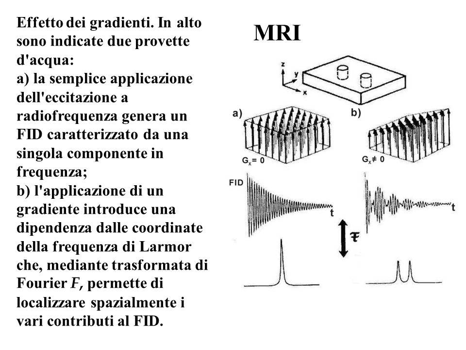 MRI Effetto dei gradienti. In alto sono indicate due provette d'acqua: a) la semplice applicazione dell'eccitazione a radiofrequenza genera un FID car