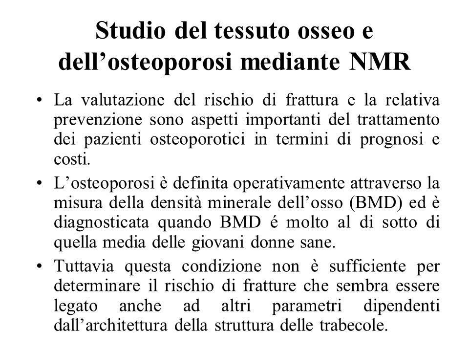 Studio del tessuto osseo e dellosteoporosi mediante NMR La valutazione del rischio di frattura e la relativa prevenzione sono aspetti importanti del t