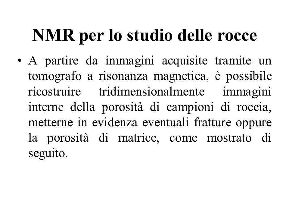 NMR per lo studio delle rocce A partire da immagini acquisite tramite un tomografo a risonanza magnetica, è possibile ricostruire tridimensionalmente
