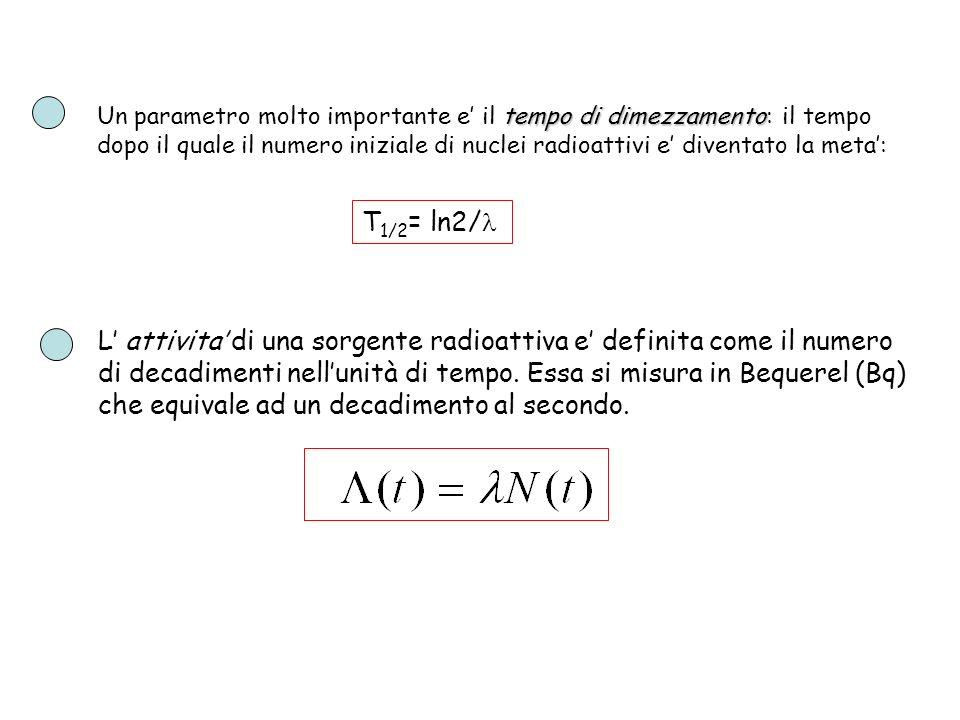 tempo di dimezzamento Un parametro molto importante e il tempo di dimezzamento: il tempo dopo il quale il numero iniziale di nuclei radioattivi e dive