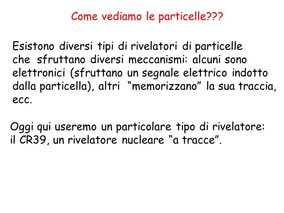 Come vediamo le particelle??? Esistono diversi tipi di rivelatori di particelle che sfruttano diversi meccanismi: alcuni sono elettronici (sfruttano u