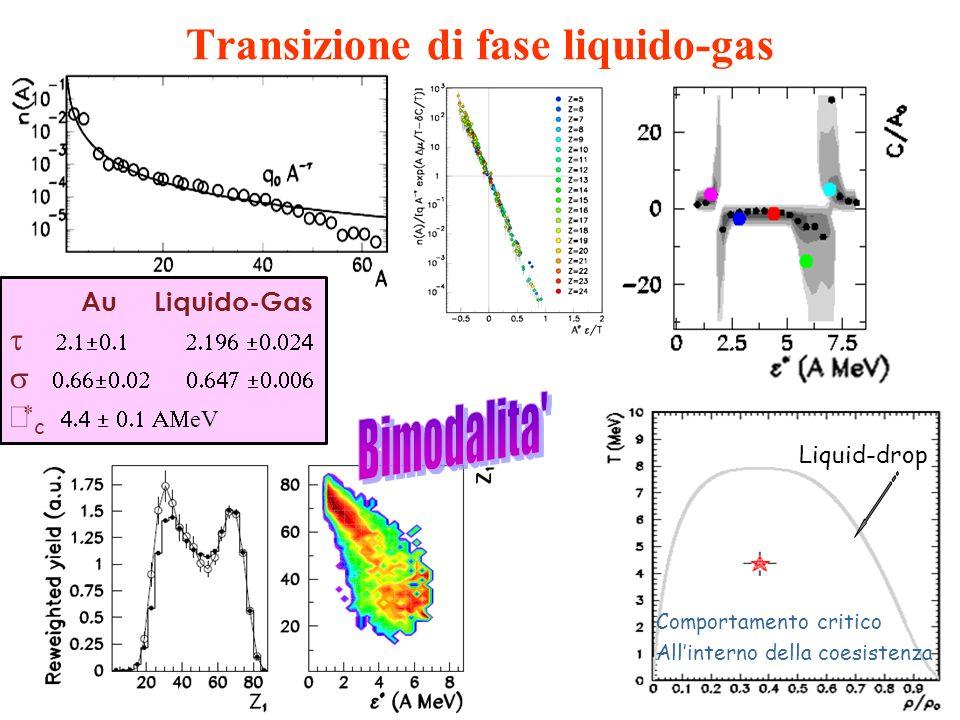 Transizione di fase liquido-gas Liquid-drop Au Liquido-Gas c eV Comportamento critico Allinterno della coesistenza