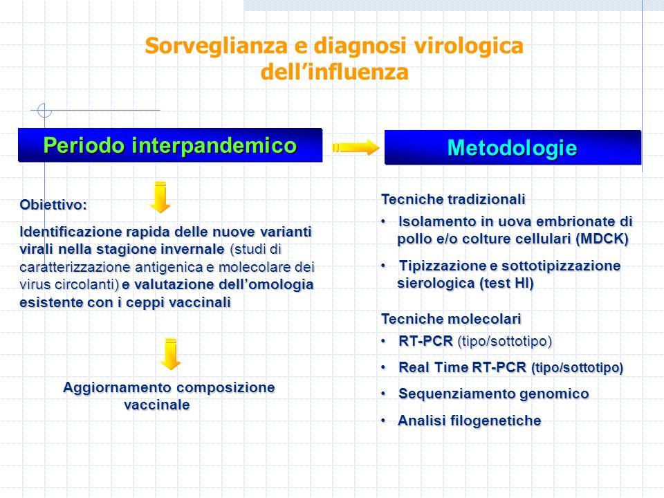 Periodo interpandemico Aggiornamento composizione vaccinale Aggiornamento composizione vaccinale MetodologieMetodologie Obiettivo: Identificazione rap