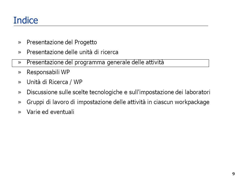20 WP9 Gestione del Progetto 2002 N D G F M A M G L A S O N D Responsabile 2003 Prof.
