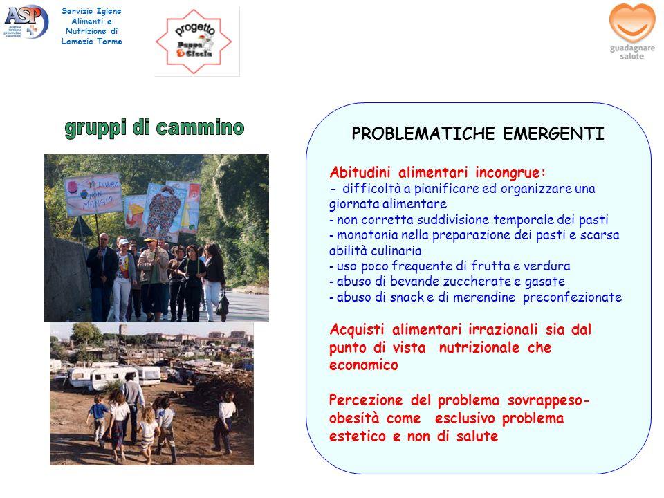 Servizio Igiene Alimenti e Nutrizione di Lamezia Terme PROBLEMATICHE EMERGENTI Abitudini alimentari incongrue: - difficoltà a pianificare ed organizza