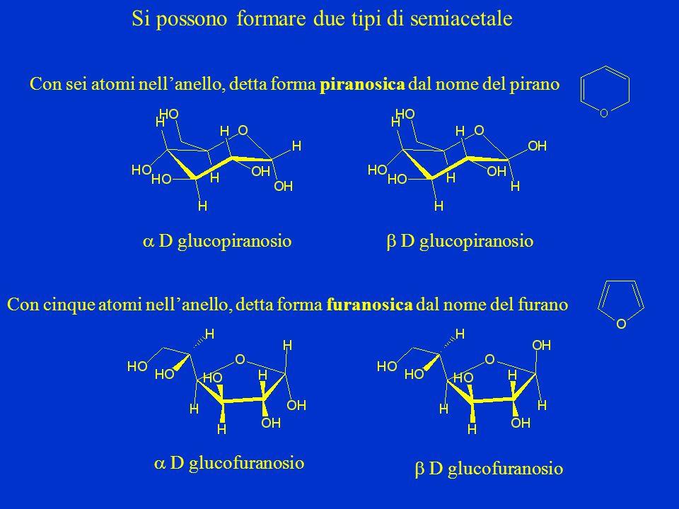 Si possono formare due tipi di semiacetale Con sei atomi nellanello, detta forma piranosica dal nome del pirano D glucopiranosio Con cinque atomi nell