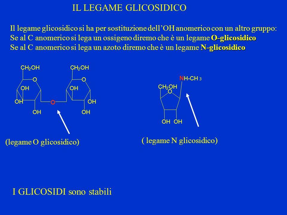 Il legame glicosidico si ha per sostituzione dellOH anomerico con un altro gruppo: O-glicosidico Se al C anomerico si lega un ossigeno diremo che è un