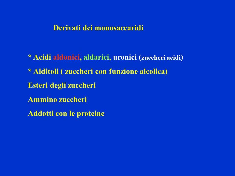 Derivati dei monosaccaridi * Acidi aldonici, aldarici, uronici ( zuccheri acidi ) * Alditoli ( zuccheri con funzione alcolica) Esteri degli zuccheri A