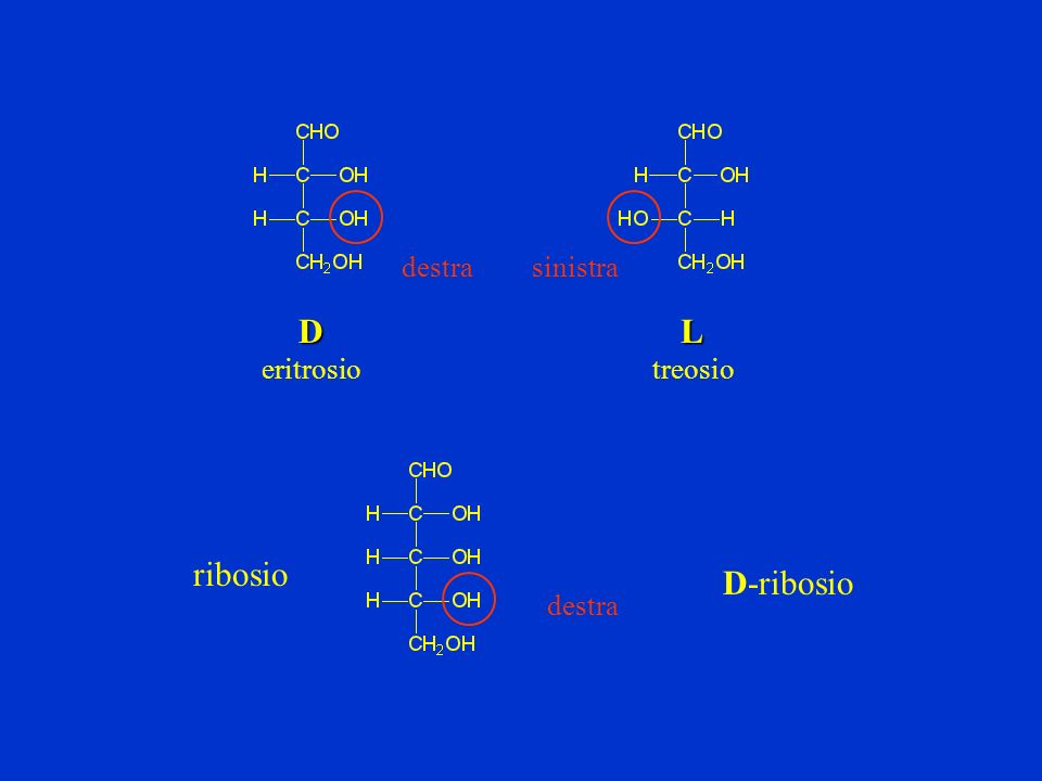 Il legame glicosidico si ha per sostituzione dellOH anomerico con un altro gruppo: O-glicosidico Se al C anomerico si lega un ossigeno diremo che è un legame O-glicosidico N-glicosidico Se al C anomerico si lega un azoto diremo che è un legame N-glicosidico IL LEGAME GLICOSIDICO (legame O glicosidico) ( legame N glicosidico) I GLICOSIDI sono stabili O OH OH OH CH 2 OH O OH OH OH CH 2 OH O O N H-CH 3 CH 2 OH OHOH