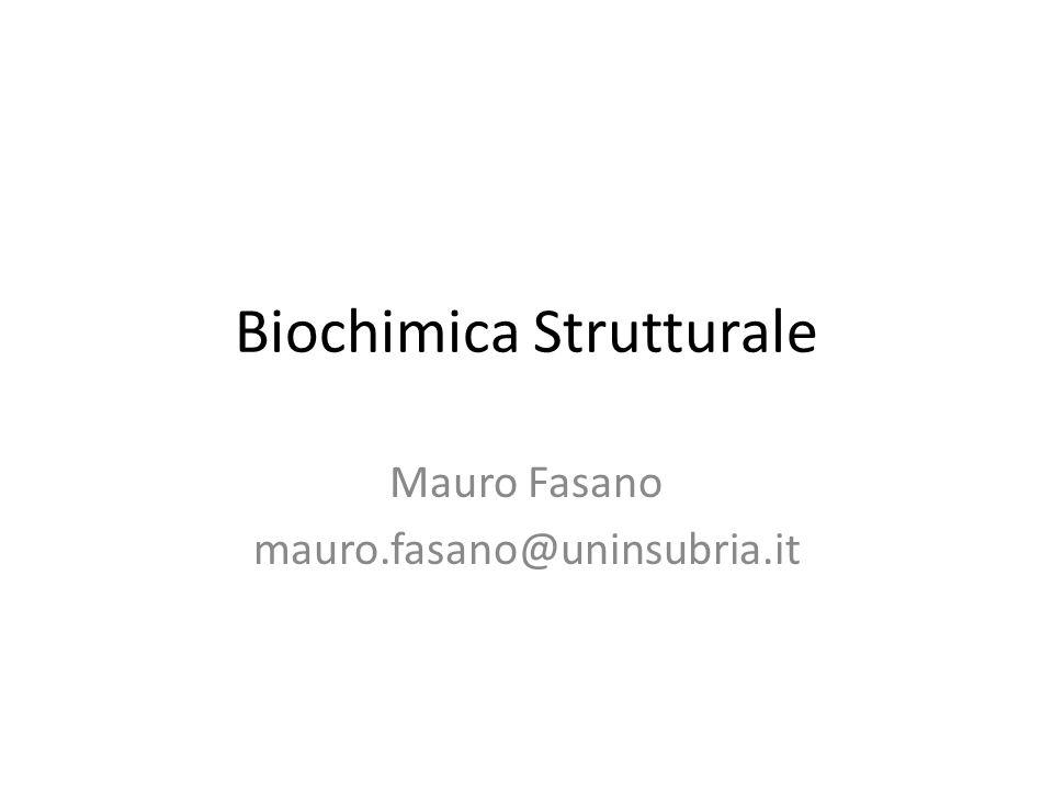 Biochimica Strutturale Mauro Fasano mauro.fasano@uninsubria.it
