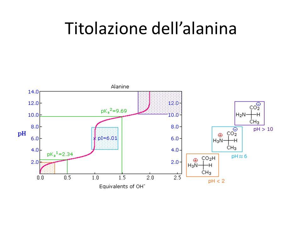 Titolazione dellalanina