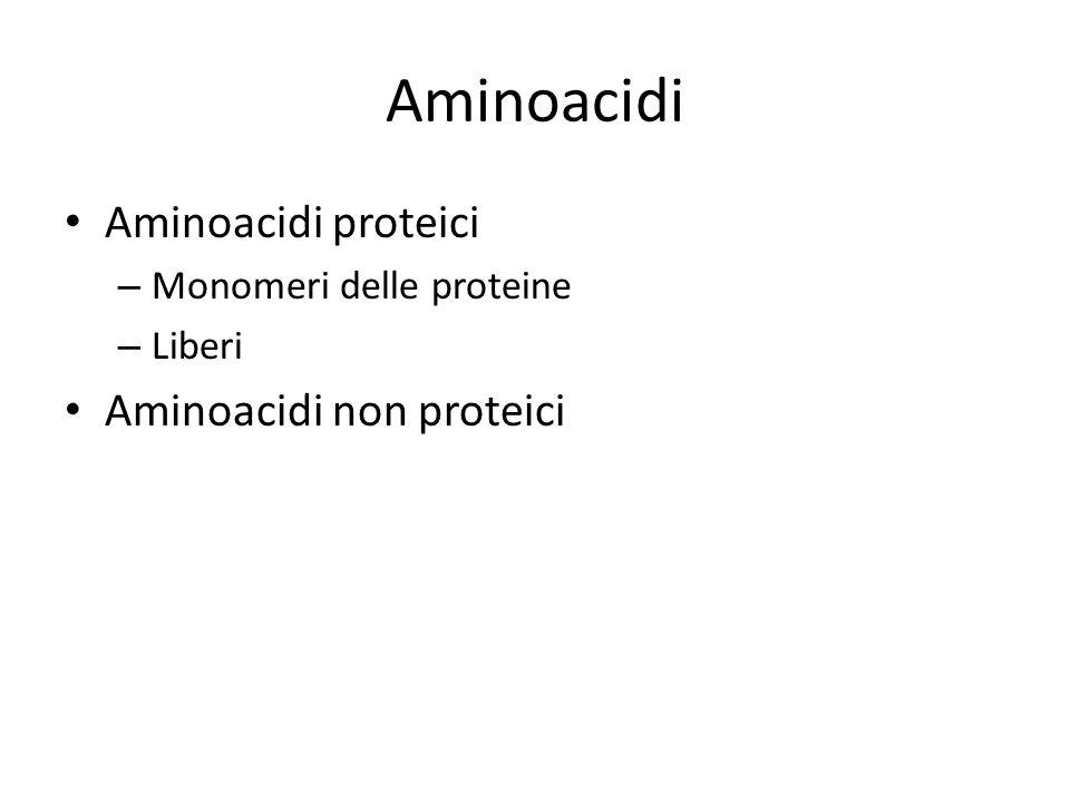 Aminoacidi Aminoacidi proteici – Monomeri delle proteine – Liberi Aminoacidi non proteici