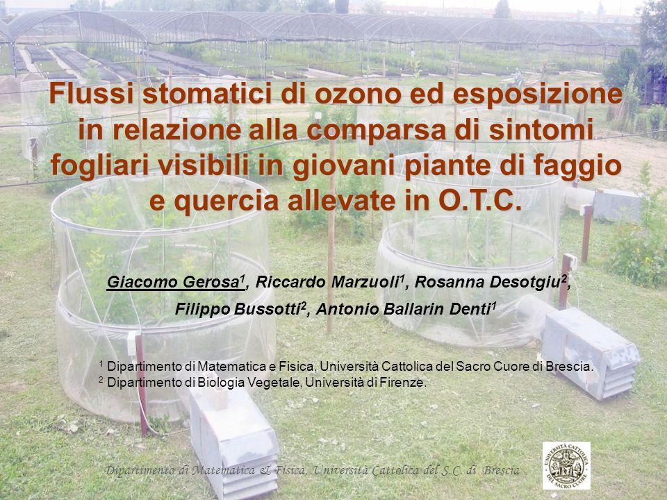Dipartimento di Matematica & Fisica, Università Cattolica del S.C. di Brescia Flussi stomatici di ozono ed esposizione in relazione alla comparsa di s