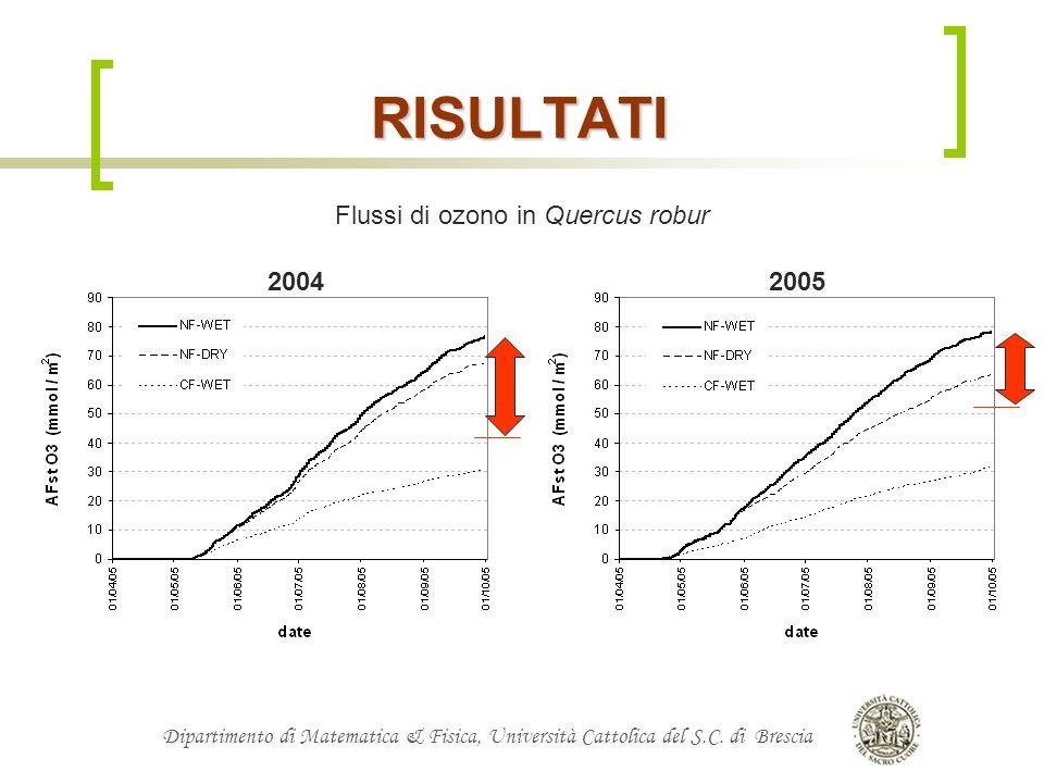 Dipartimento di Matematica & Fisica, Università Cattolica del S.C. di Brescia Flussi di ozono in Quercus robur RISULTATI 20042005