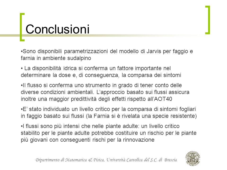Dipartimento di Matematica & Fisica, Università Cattolica del S.C. di Brescia Conclusioni Sono disponibili parametrizzazioni del modello di Jarvis per