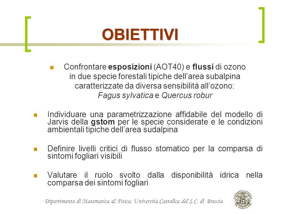 Dipartimento di Matematica & Fisica, Università Cattolica del S.C. di Brescia OBIETTIVI Confrontare esposizioni (AOT40) e flussi di ozono in due speci