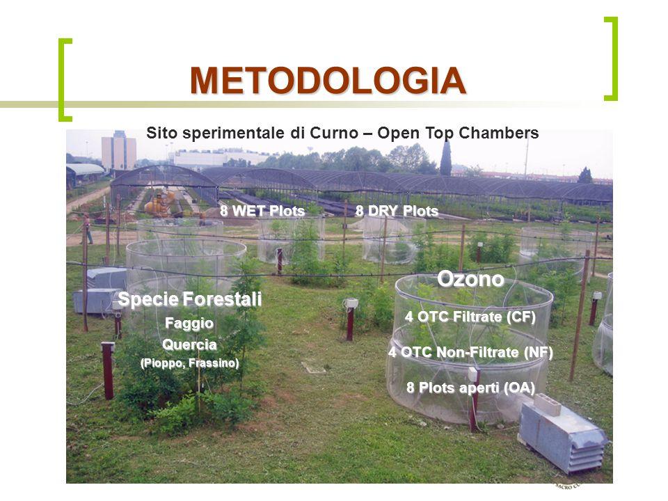 Dipartimento di Matematica & Fisica, Università Cattolica del S.C. di Brescia METODOLOGIA Sito sperimentale di Curno – Open Top Chambers 8 WET Plots 8