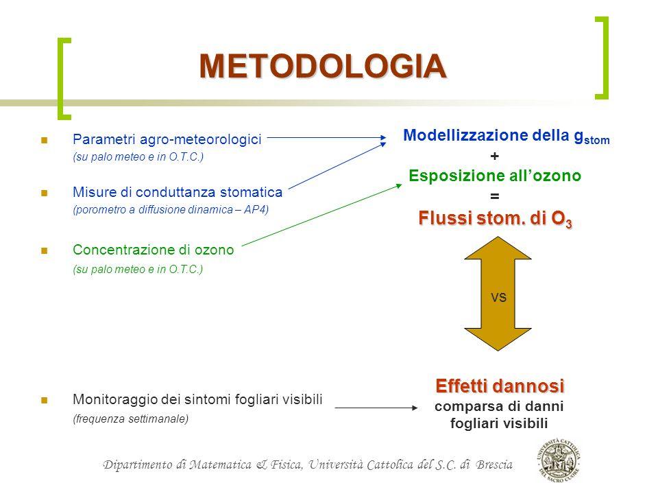 Dipartimento di Matematica & Fisica, Università Cattolica del S.C. di Brescia METODOLOGIA Parametri agro-meteorologici (su palo meteo e in O.T.C.) Mis