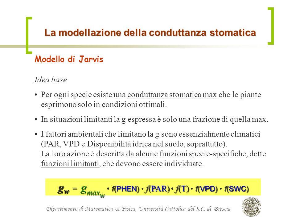 Dipartimento di Matematica & Fisica, Università Cattolica del S.C. di Brescia La modellazione della conduttanza stomatica Modello di Jarvis Idea base