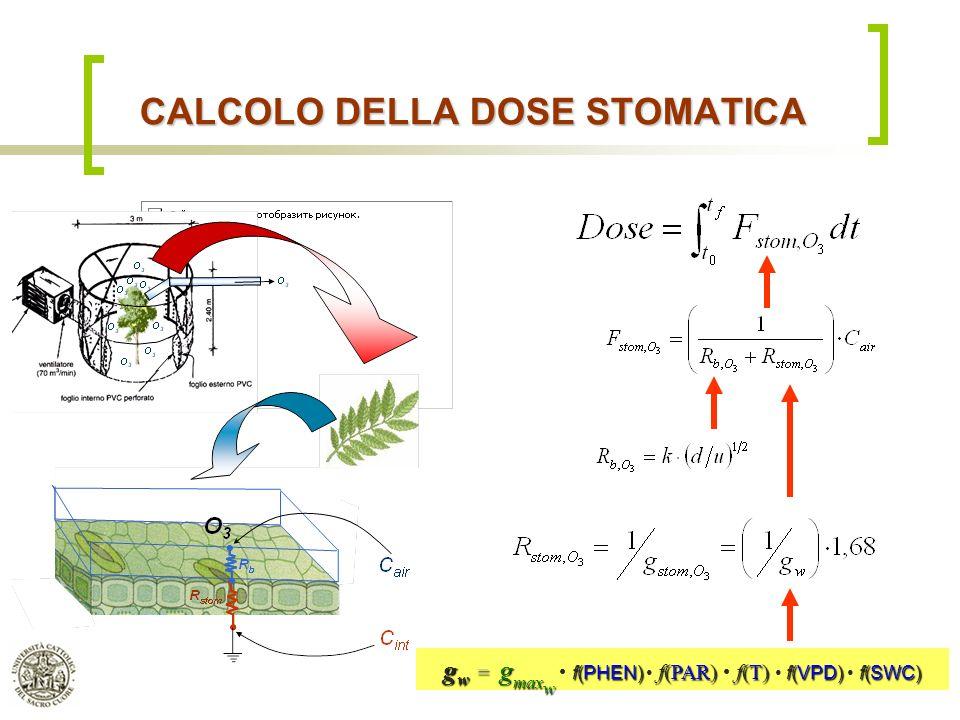 Dipartimento di Matematica & Fisica, Università Cattolica del S.C. di Brescia CALCOLO DELLA DOSE STOMATICA g w = g max w f(PHEN) f(PAR) f(T) f(VPD) f(