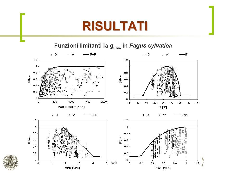 Dipartimento di Matematica & Fisica, Università Cattolica del S.C. di Brescia RISULTATI Funzioni limitanti la g max in Fagus sylvatica