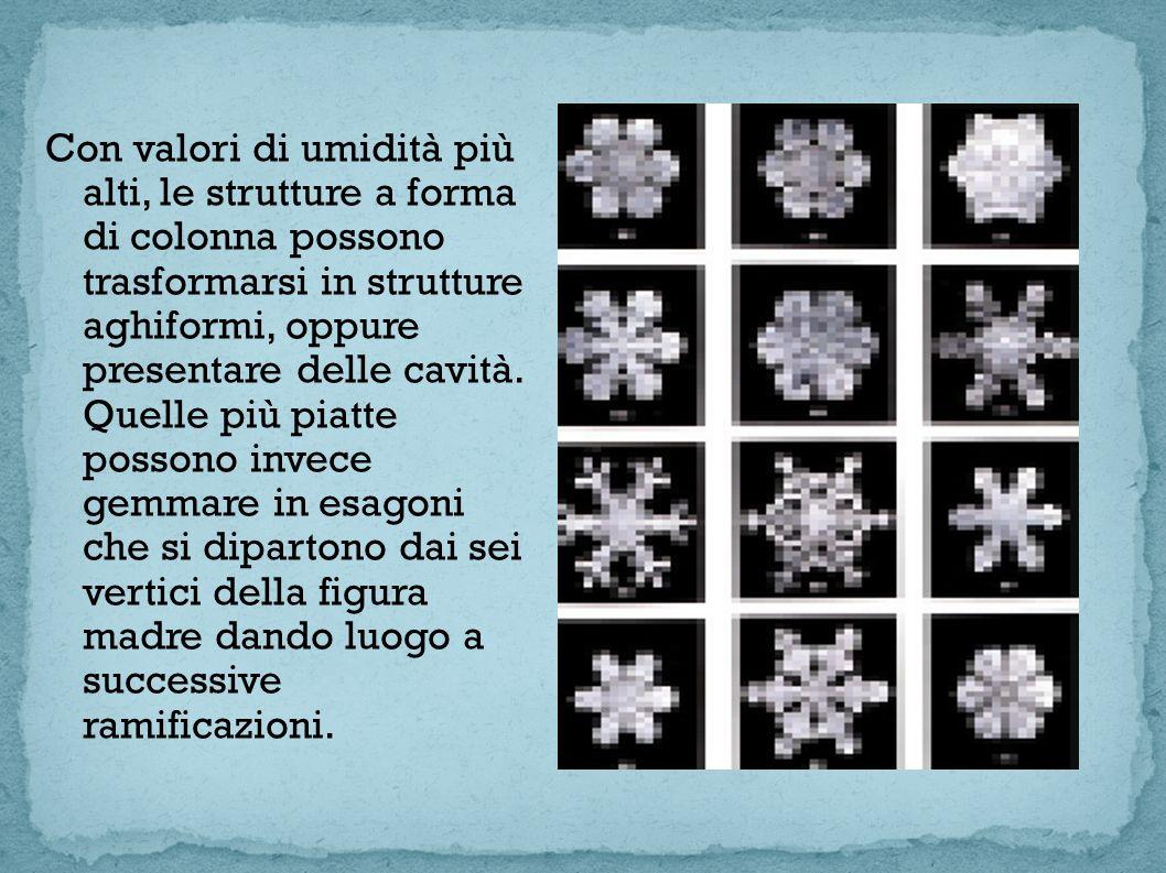 La struttura complessa del cristallo di neve dipende dalle diverse velocità di crescita di questi due moduli fondamentali in un processo di che deve la sua regolarità, oltre che alla simmetria della griglia atomica del ghiaccio, anche al fatto che le condizioni di temperatura e umidità in cui si trova a crescere il cristallo sono mediamente le stesse in tutte le direzioni.