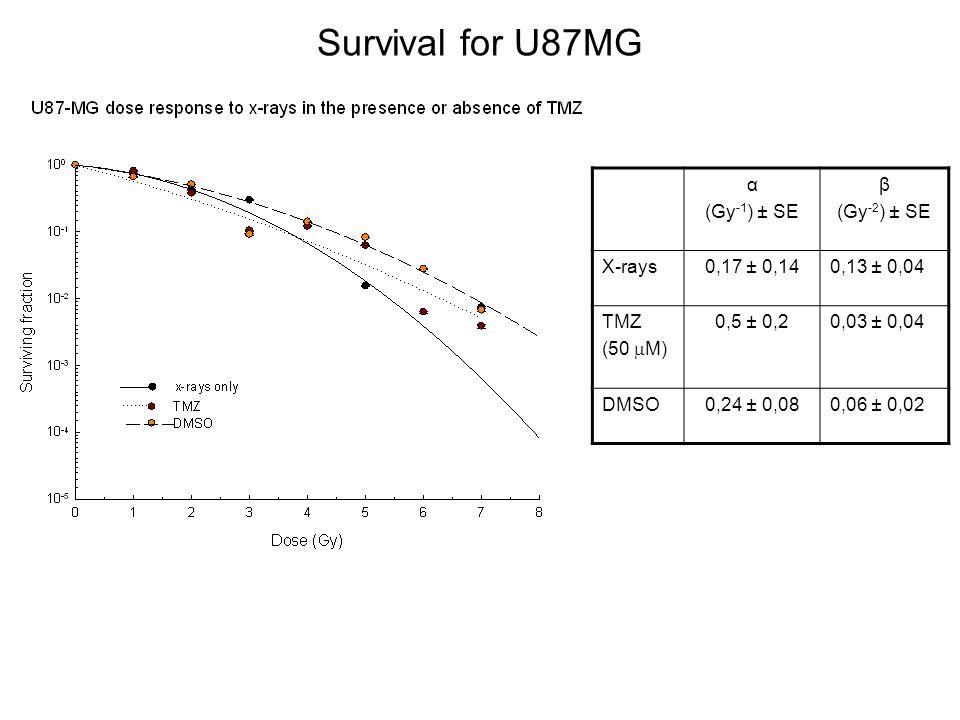 Survival for U87MG α (Gy -1 ) ± SE β (Gy -2 ) ± SE X-rays0,17 ± 0,140,13 ± 0,04 TMZ (50 M) 0,5 ± 0,20,03 ± 0,04 DMSO0,24 ± 0,080,06 ± 0,02