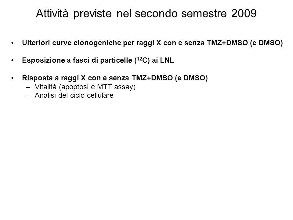 Attività previste nel secondo semestre 2009 Ulteriori curve clonogeniche per raggi X con e senza TMZ+DMSO (e DMSO) Esposizione a fasci di particelle (